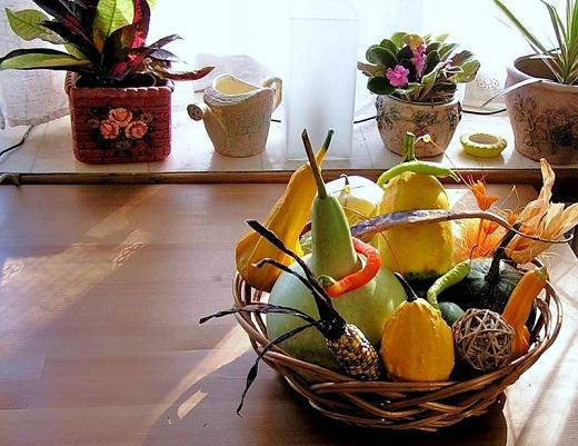Как украсить кухню комнатными растениями