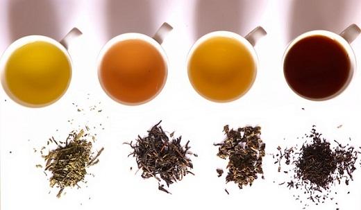 Палитра чайных вкусов. Типы чая.