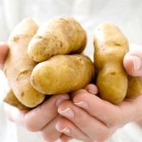 Омолаживающая маска для рук из картофеля