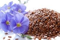Очищение сосудов семенем льна и календулой