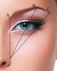 Как оформить изогнутые брови