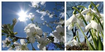 Как пережить весну.