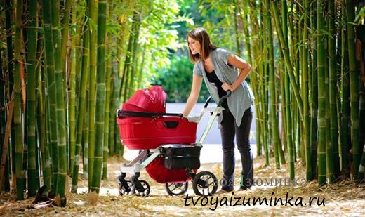 Рейтинг прогулочных колясок для новорожденных