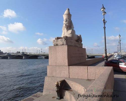 Сфинкс и грифон на Университетской набережной в СПб