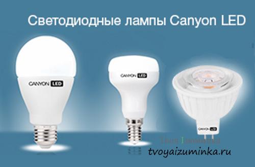 Настольная лампа MW-LIGHT 631031801 Ракурс - купить
