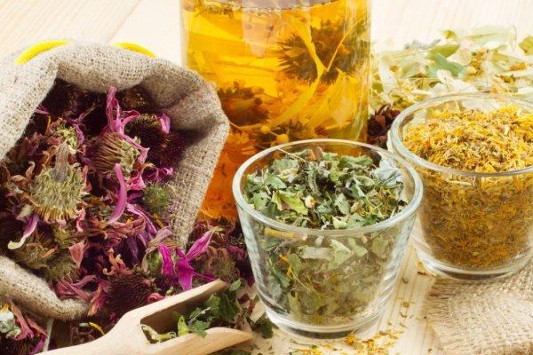 Профилактика и лечение кашля травами