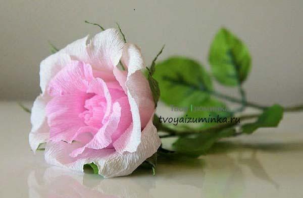 Розы из гофрированной бумаги своими руками для начинающих